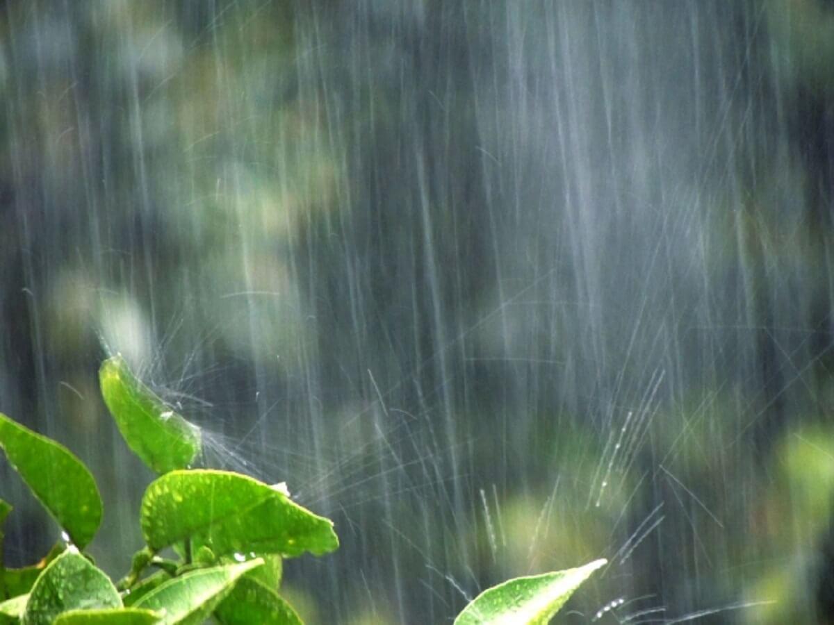 大牟田市の各所で浸水などによる通行止め まずは命を守る行動を!!