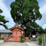 「大川公園&磯良丸神社」大川郷土を語るうえで不可欠な場所【大川市】