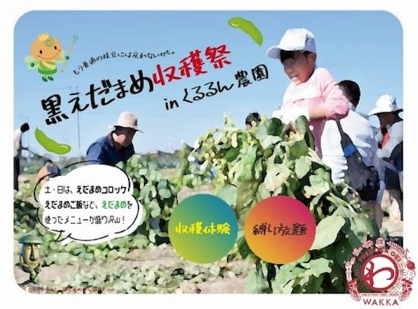 道の駅おおき くるるん農園で黒えだまめ収穫祭を開催 最高級の枝豆の縛り放題や収穫体験など