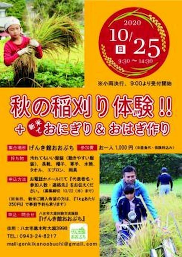 秋の稲刈り体験
