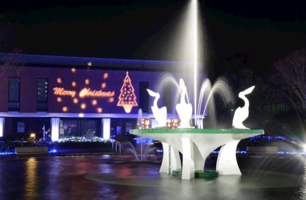 綺麗なキラキラにうっとり!クリスマスライトアップ&イルミネーション 開催中!【久留米市】