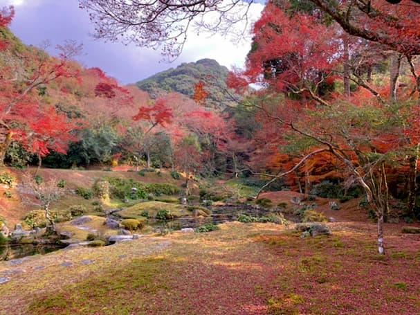 清水寺本坊庭園 雪舟が造った庭園の真っ赤に色づく紅葉に心奪われる【みやま市】