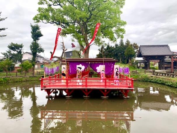 水田天満宮内にある心字池の舞台が藤の花一色に!?【見ごろの春花】
