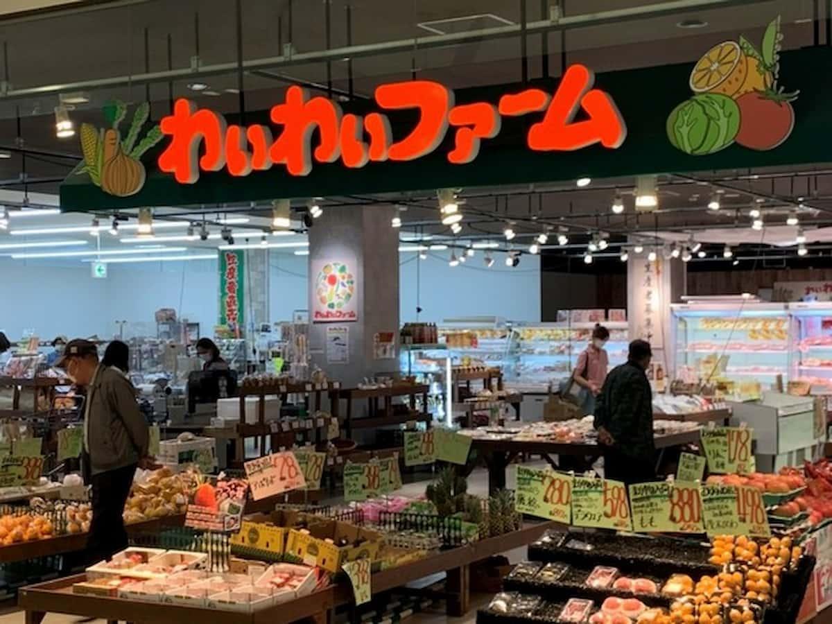 わいわいファームイオン大木店って生産者直売のお店がオープンするみたい。10月上旬予定